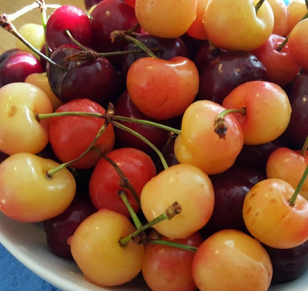 Cherries! Nature's Blood Cleanser